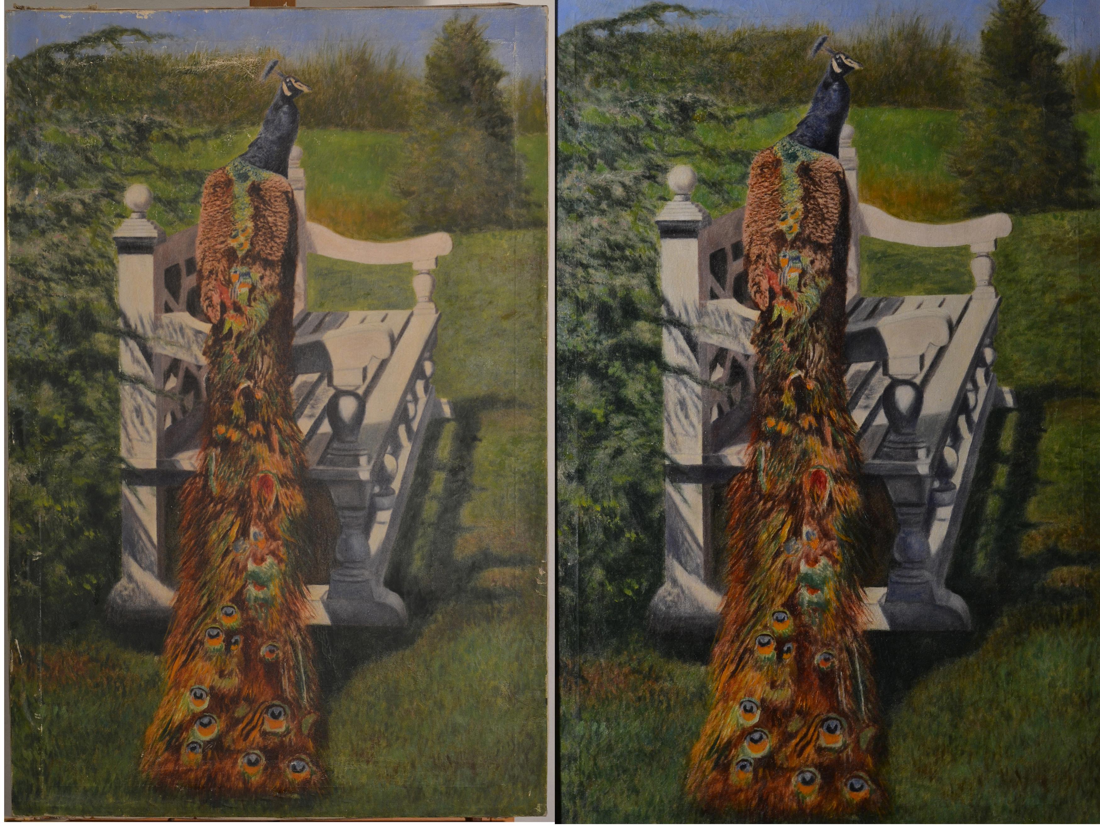 Paabulind kaks pilti koos